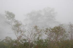 霧の小遠見