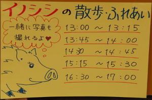 狛猪のスケジュール