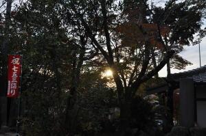 北摂紅葉(13);西光寺での夕暮れ