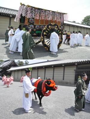 葵祭2010-10