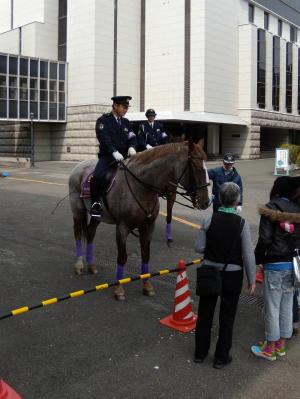 京都平安騎馬隊2