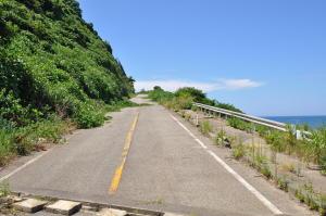 新潟2010;峠道の今
