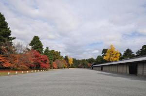 京都御苑紅葉2010-2