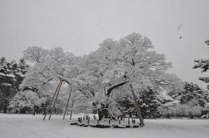 大雪の大晦日