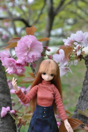 桜の下の一コマ