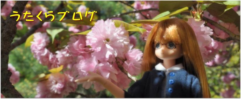 祇園祭2013(16): うたくら ブログ
