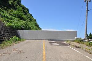 新潟2010;椎谷トンネルの元の道