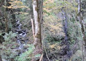 岩間の滝&糸滝