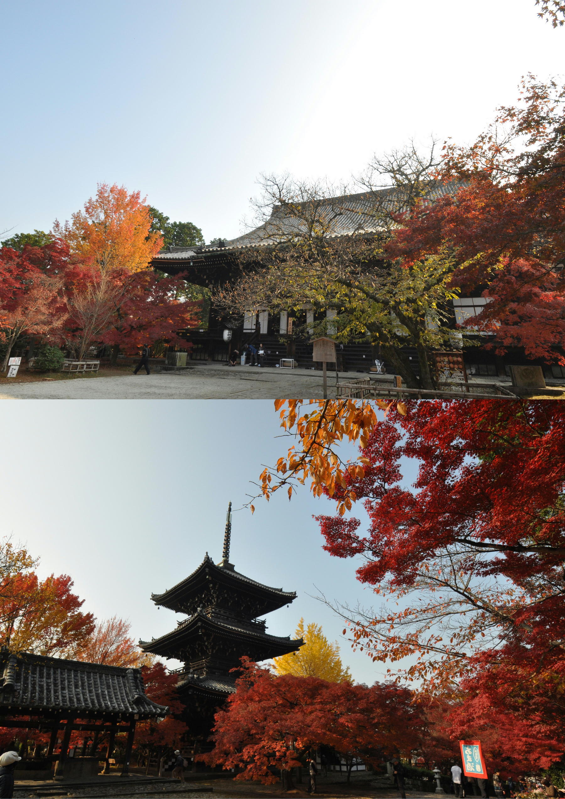 真如堂2011-10