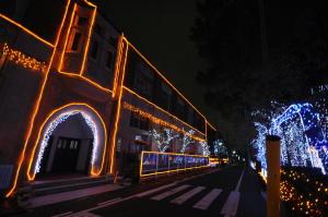 平安女子イルミネーション2011(2)